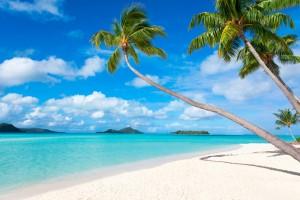 3D Fototapete Strand mit Palmen in der Südsee, Bora Bora